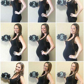 عکس هفته های بارداری
