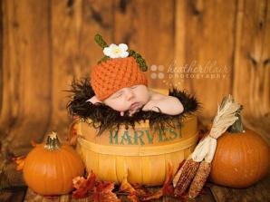 عکاسی از نوزاد در فصل پاییز
