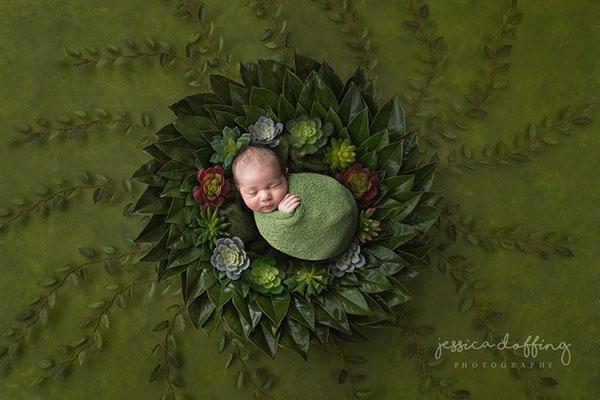 رنگ سبز در عکاسی