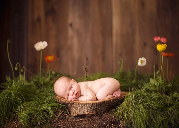 عکاسی نوزاد در طبیعت