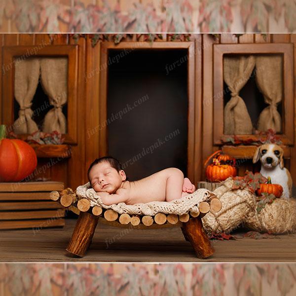 تم پاییزی آتلیه نوزاد